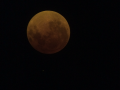Blood Moon with Eyepiece Filter